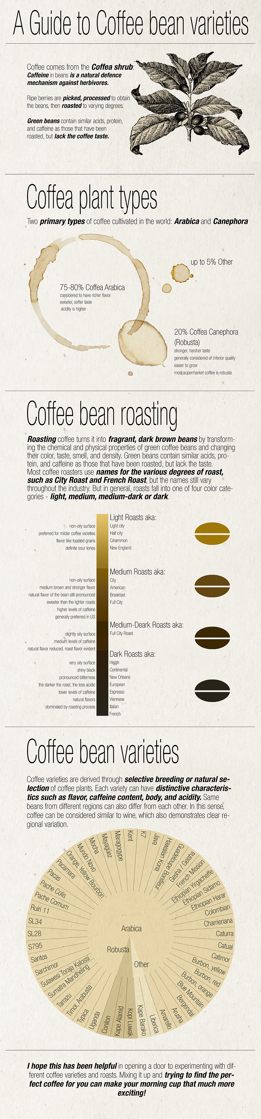 Coffee infographic3